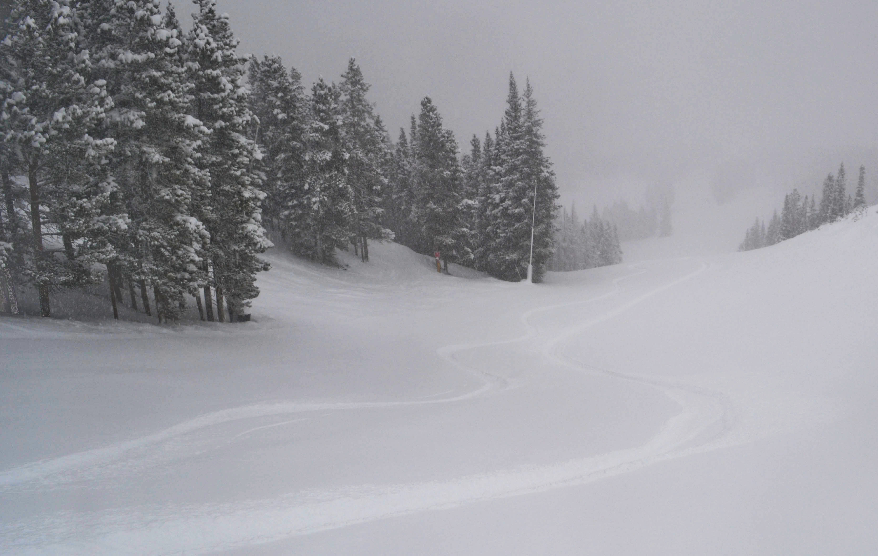 First Turns on Spruce