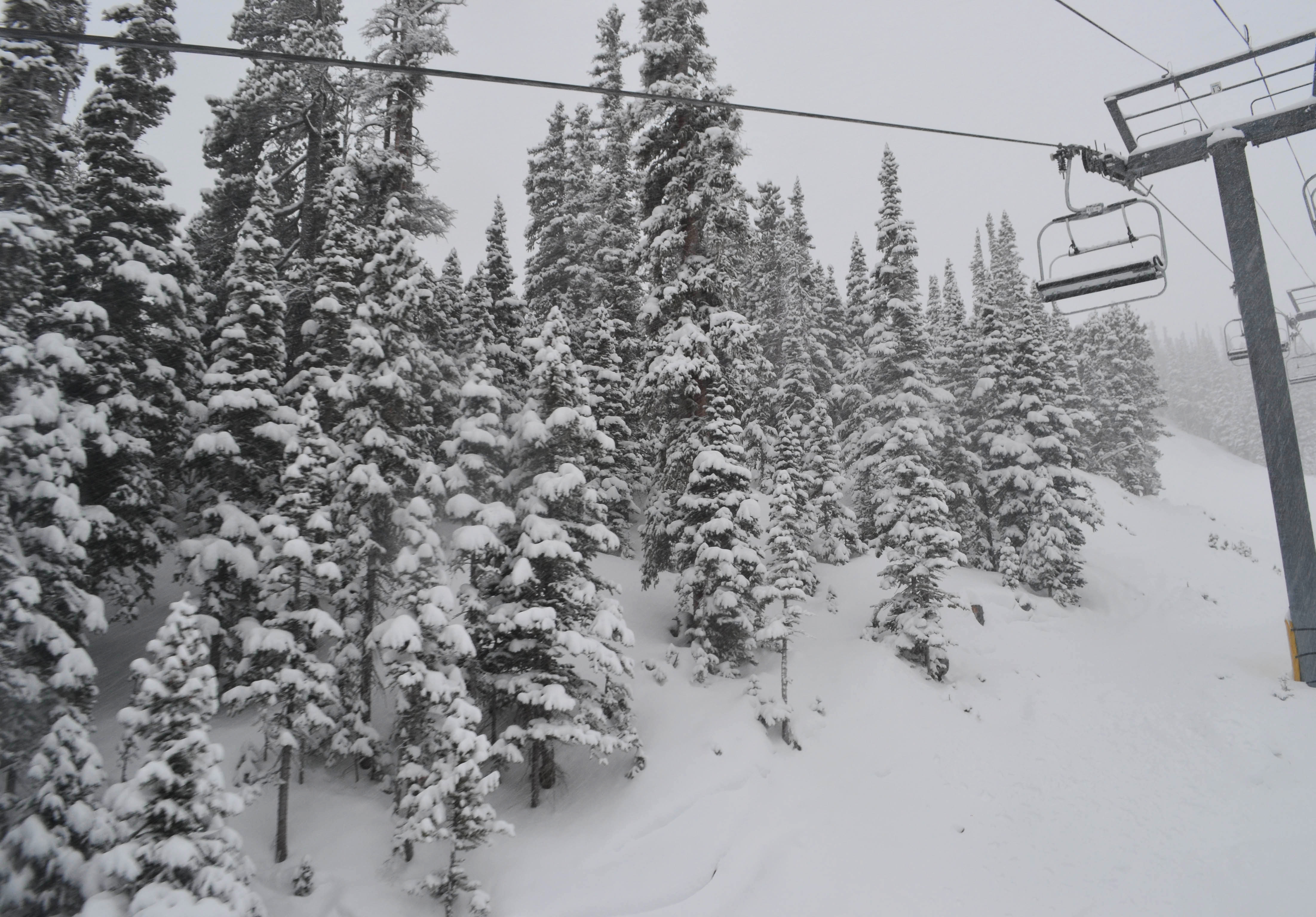 Snowy world at Breck