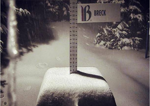 Breck snow stake cam