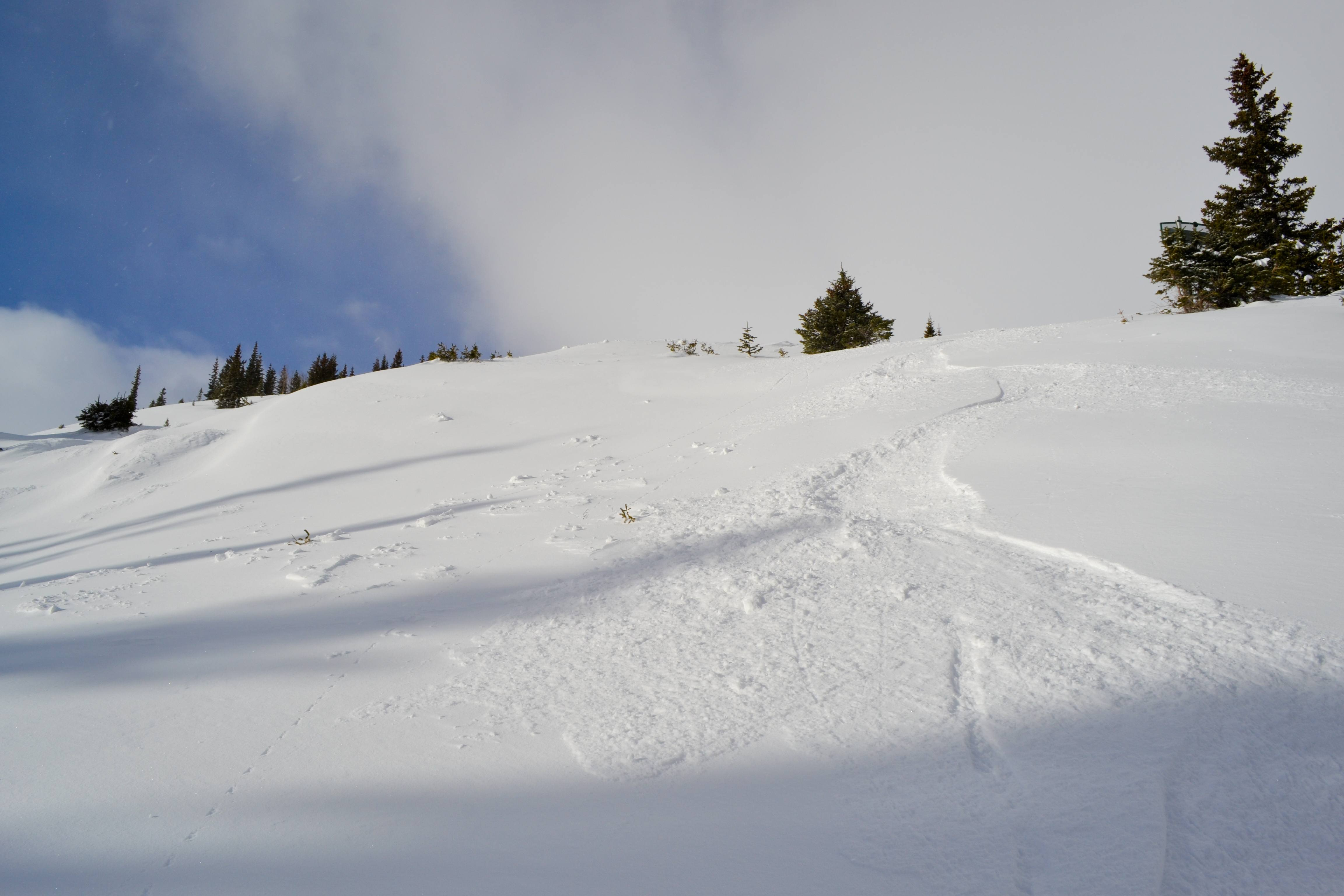 Fresh tracks at Breck