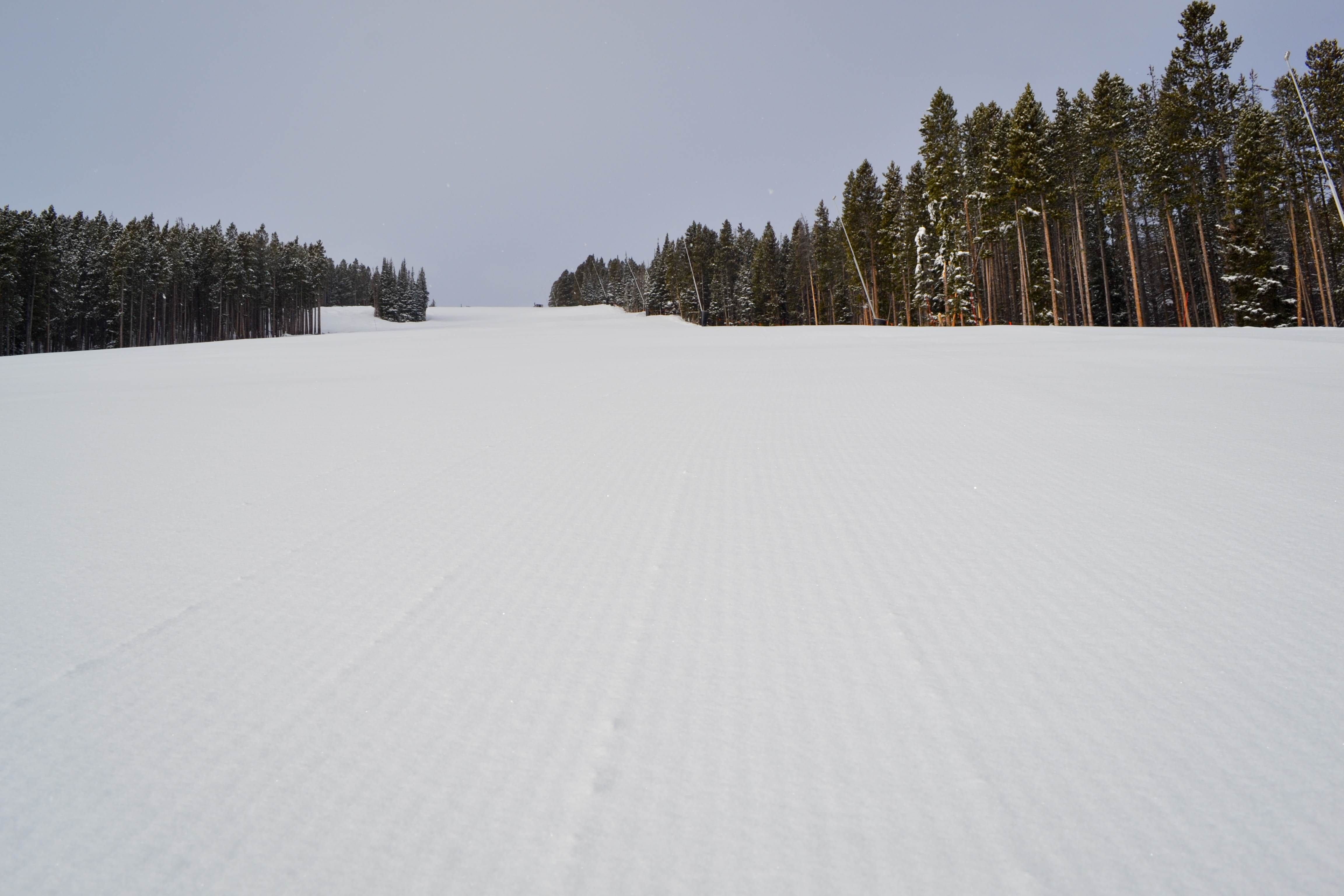 Soft Groomers at Breck