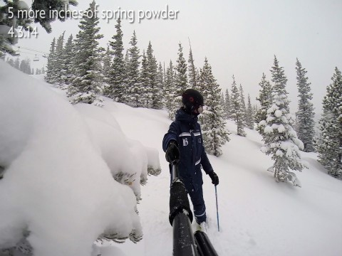 Peak 10 Powder